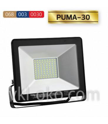 Прожектор светодиодный LED HOROZ PUMA-30 30W GREEN (Зелёный)